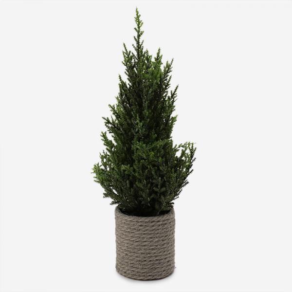 クリスマスツリー 2019 36cm