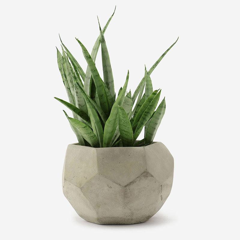 アクタス ポット 3.5号 観葉植物 鉢カバー