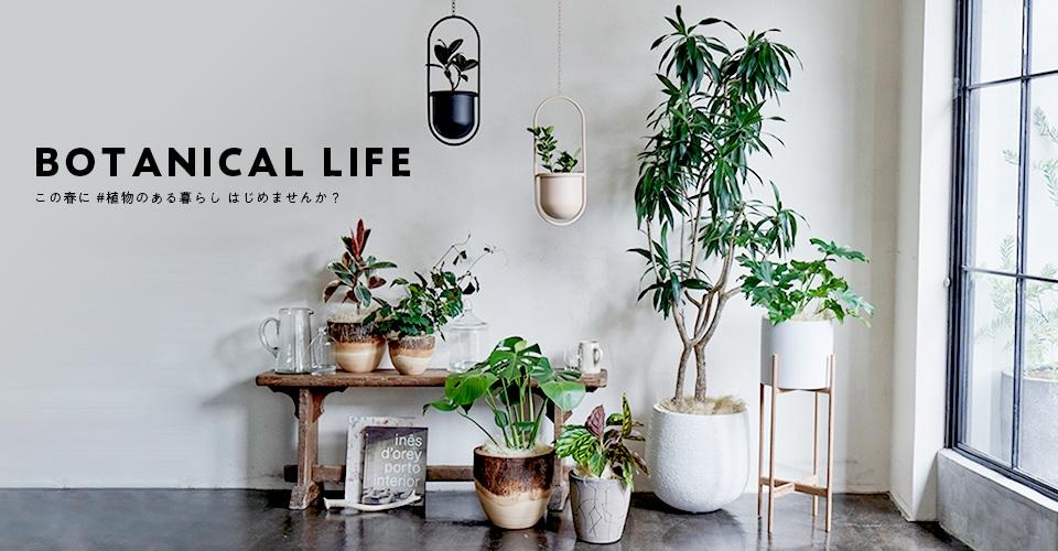 ▼ BOTANICAL LIFE この春に #植物のある暮らし はじめませんか?